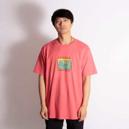 Stussy Irises T-Shirt Pale Red