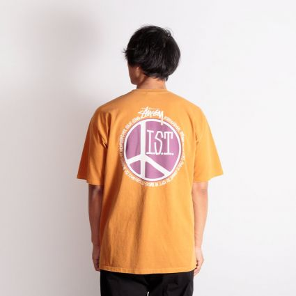 Stussy Peace Dot Pigment Dyed T-Shirt Copper